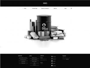 IIMG LTD - strona wizytówka na WordPress